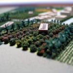 Detail view of the some of the agricultural research fields of our architectural site model of Lakeview Farm